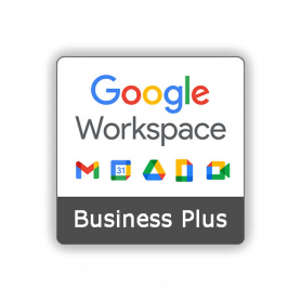 Google workspace Business plus 1 year license